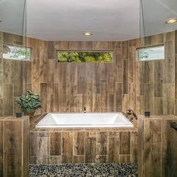 Master Tub Shower 2